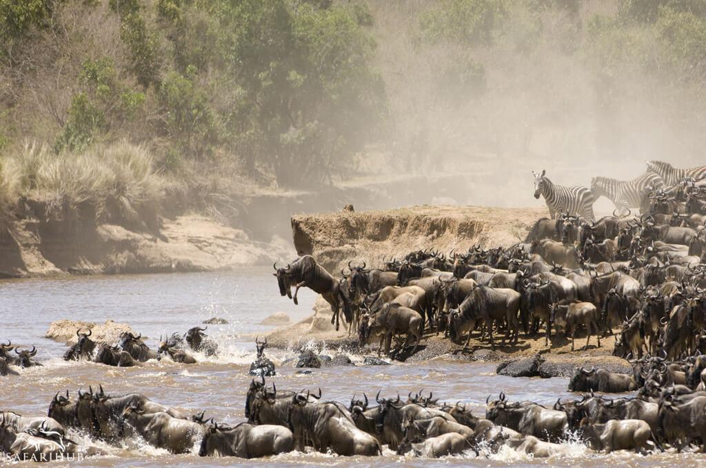 Karatu to Serengeti