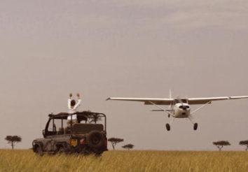 Ultimate fly in Safari