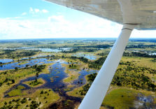 Flying Safaris