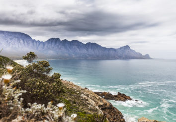 Magnificent garden route
