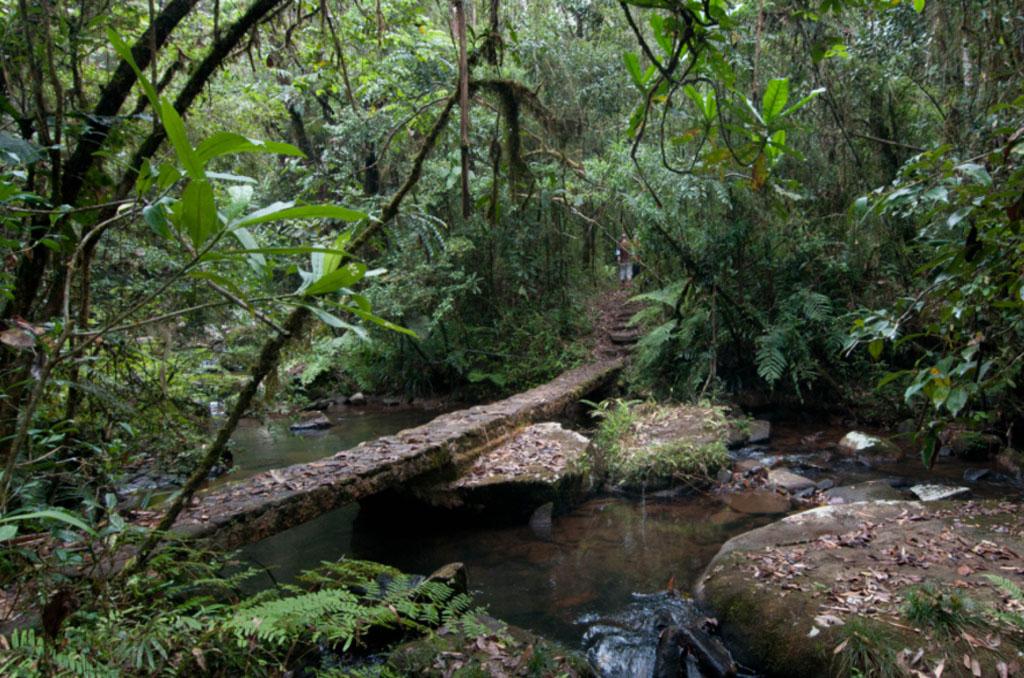 Andasibe (Voimma Reserve) to Antananarivo