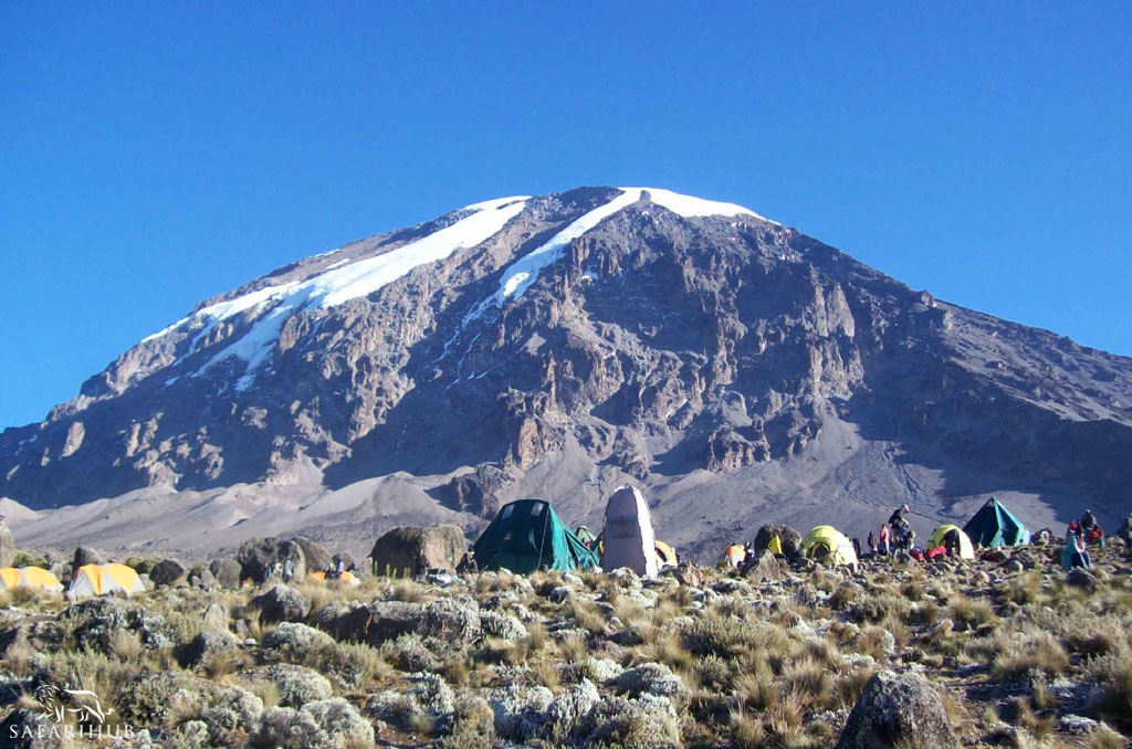 Barranco Camp (3,850m/12,600ft) to Karranga Camp (3,950m/13,000ft) via the Barranco Wall (4,200m/13,800ft)
