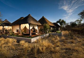 Namibia Etosha highlights