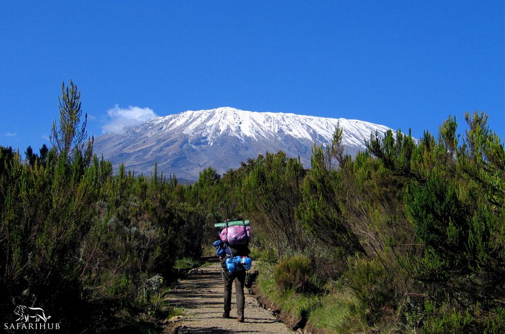 Marangu Gate (1,830m/6,000ft) to Mandara Huts (2,700m/8,900ft)