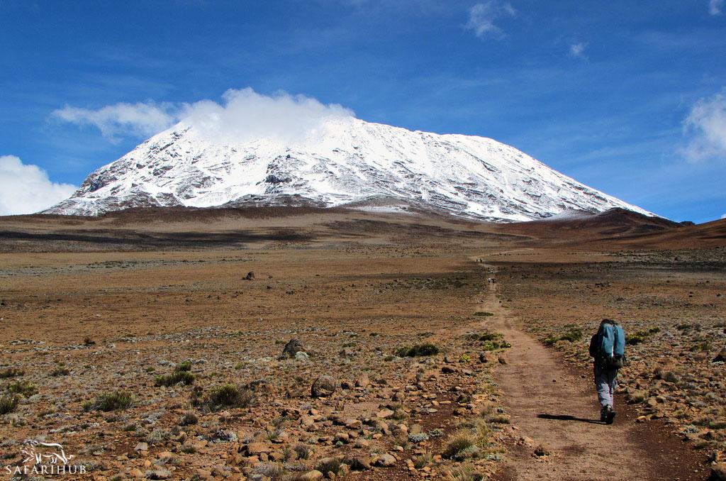 Horombo Huts (3,720m/12,200ft) to Kibo Huts (4,700m/15,400ft)