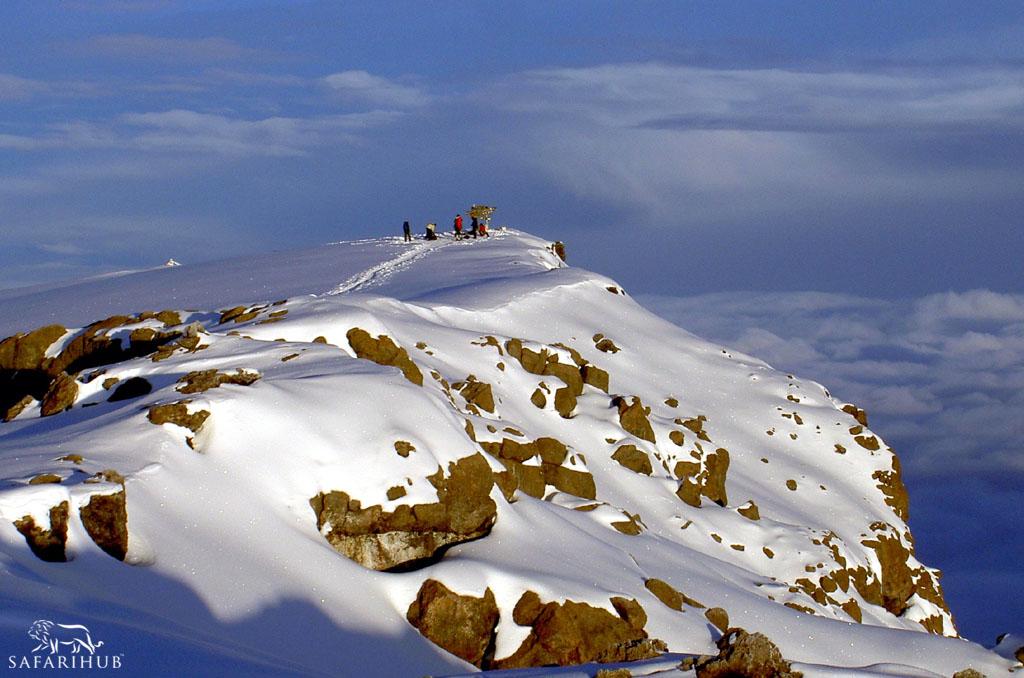 Kibo Camp (4,700m/15,400ft) to Uhuru Peak (5,895m/19,340ft) to Horombo Hut (3,720m/12,200ft)