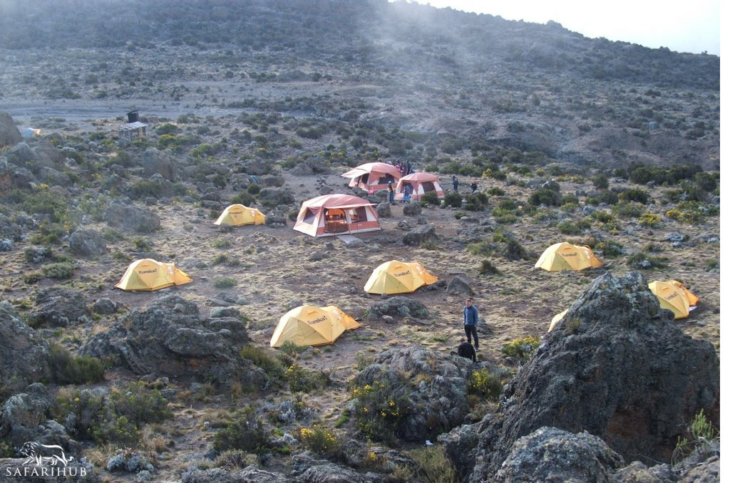 Buffalo/Pofu Camp (4,020m/13,200ft) to Third Cave Camp (3,870m/12,700ft)