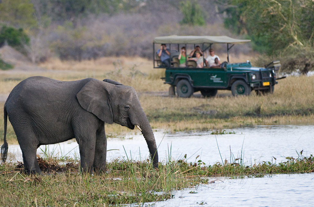 Travel to Liwonde National Park