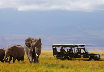 Sky Safari Kenya Classic