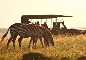 Sky Safari Kenya Connoisseur
