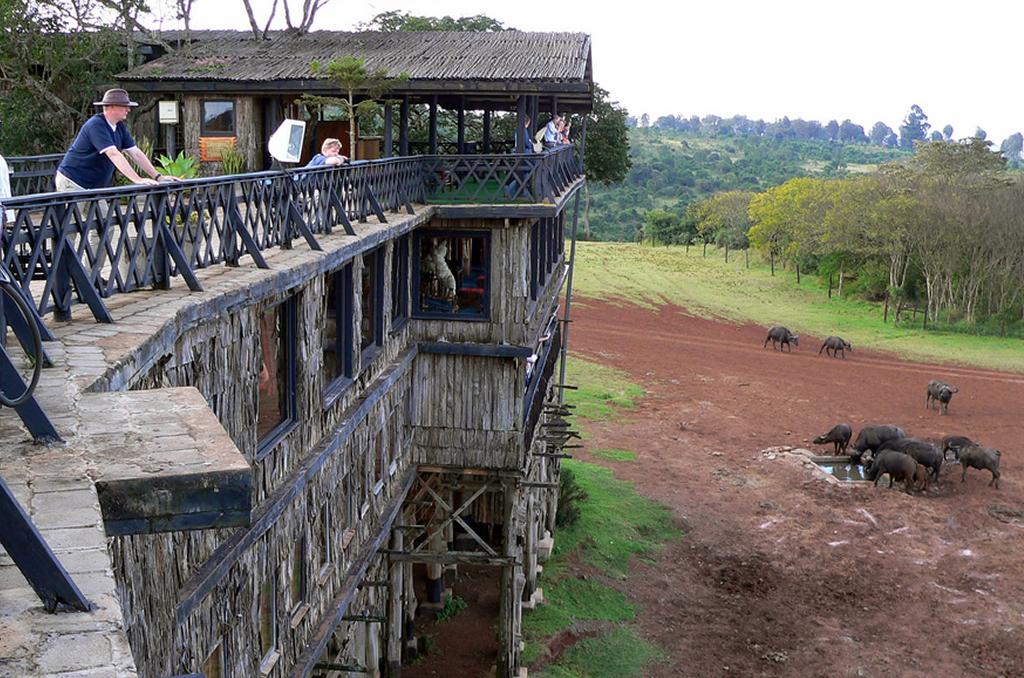 Aberdares to Lake Nakuru