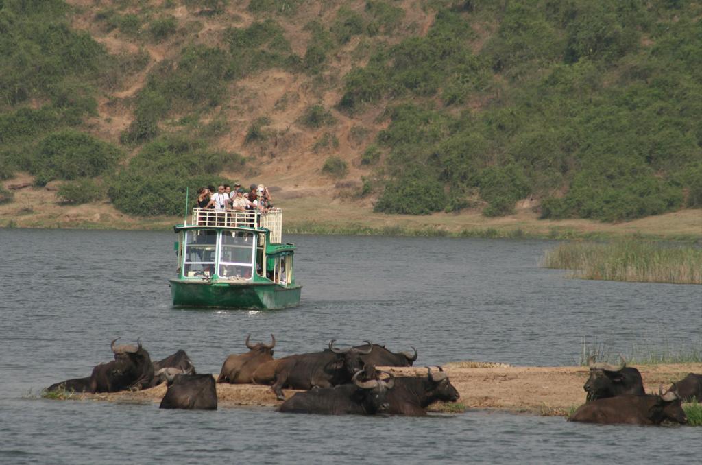 Kibale Forest National Park to Queen Elizabeth National Park