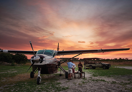 Special Sky Safaris