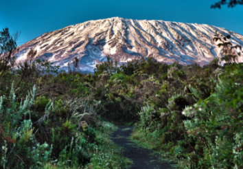 Climbing Mount Kilimanjaro – The Lemosho Route