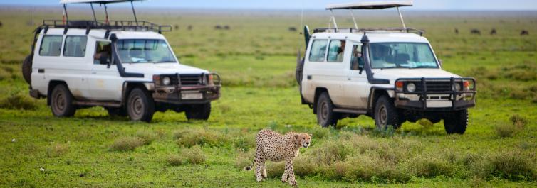 Selous Game Reserve - Safarihub