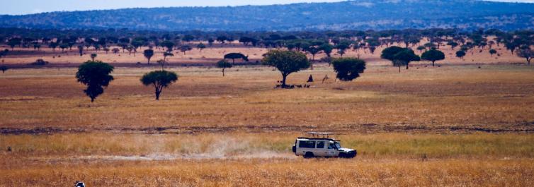 Best season/time to visit - Safarihub