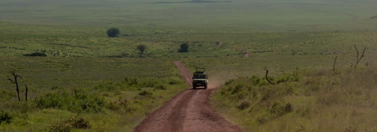 Destination in Tanzania - Safarihub