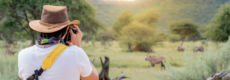 Safari Important Stuff - Safarihub