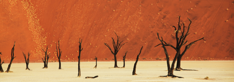 NAMIB DESERT - Places to Visit in Africa in 2021